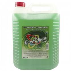 Ever Clean Υγρό Γενικού Καθαρισμού Άρωμα Δάσους 4lt